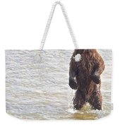 Grizzly Bear Standing To Get A Better Look In The Moraine River In Katmai Weekender Tote Bag