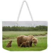 Grizzly Bear With Spring Cubs Weekender Tote Bag
