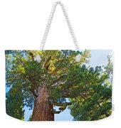 Grizzly Giant Sequoia Top In Mariposa Grove In Yosemite National Park-california    Weekender Tote Bag