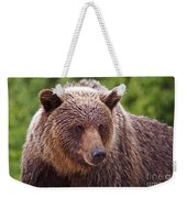 Grizzly Portrait Weekender Tote Bag