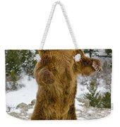 Grizzly Standing Weekender Tote Bag