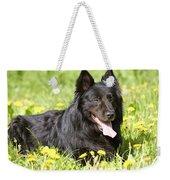 Groenendael Dog Weekender Tote Bag