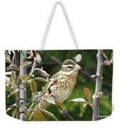 Grosbeak Weekender Tote Bag