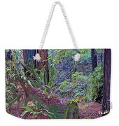 Ground Level Landscape In Armstrong Redwoods State Preserve Near Guerneville-ca Weekender Tote Bag