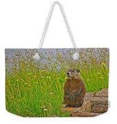 Groundhog At Point Amour In Labrador Weekender Tote Bag