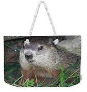 Groundhog Hiding In His Cave Weekender Tote Bag