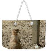Groundhog With Shadow Weekender Tote Bag