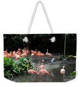 Group Of Flamingos And Lone Heron In Water Weekender Tote Bag