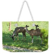 group of Kudu Antelope Weekender Tote Bag