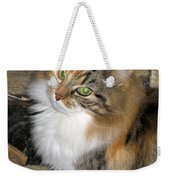 Grumpy Kitty With Emerald Eyes Weekender Tote Bag