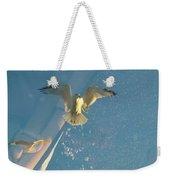 Gull Catching Popcorn Weekender Tote Bag