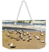Gulls At The Beach Weekender Tote Bag