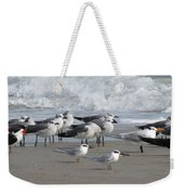 Gulls Terns Skimmers Weekender Tote Bag