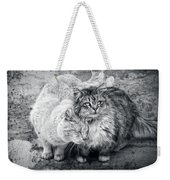Gutter Kitties Nine Weekender Tote Bag