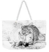 Gutter Kitties Seven Weekender Tote Bag
