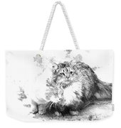 Gutter Kitties Six Weekender Tote Bag