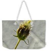 Hairy Plant Seed Pod 3 Weekender Tote Bag