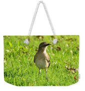 Half Beak Will Travel Weekender Tote Bag