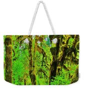 Hall Of Moss Weekender Tote Bag by Benjamin Yeager