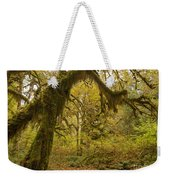 Hall Of Mosses 5 Weekender Tote Bag