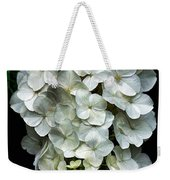 Hanging Around Weekender Tote Bag