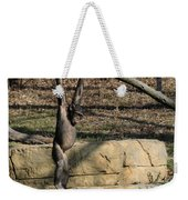 Hanging Chimp 365 Weekender Tote Bag