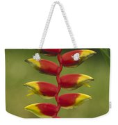 Hanging Heliconia Blooming In Rainforest Weekender Tote Bag