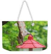 Hanging Squirrel Weekender Tote Bag