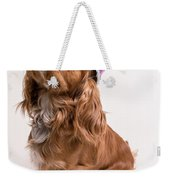 Happy Birthday Dog Weekender Tote Bag by Edward Fielding