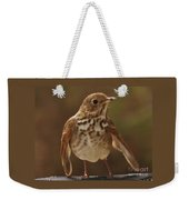 Happy Hermit Thrush Weekender Tote Bag