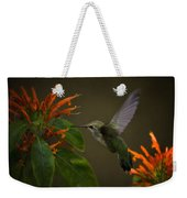 Happy Little Hummingbird  Weekender Tote Bag