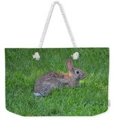 Happy Rabbit Weekender Tote Bag