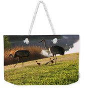 Happy Sandhill Crane Family - Original Weekender Tote Bag