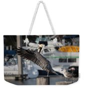 Harbor Pelican And Gull Weekender Tote Bag