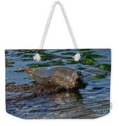 Harbor Seal At Low Tide Weekender Tote Bag