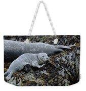 Harbor Seal Pup Resting Weekender Tote Bag