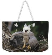 Harpy Eagle Threat Posture Amazonian Weekender Tote Bag