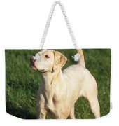Harrier Dog Weekender Tote Bag
