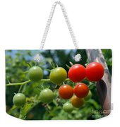 Harvest Tomatoes Weekender Tote Bag