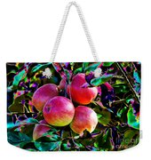 Harvesting Apples Weekender Tote Bag