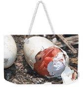 Hatching Pelican Weekender Tote Bag