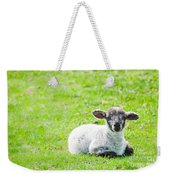 Have You Any Wool Weekender Tote Bag