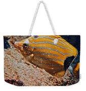 Hawaiian Butterfly Fish Weekender Tote Bag