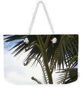 Hawaiiana 18 Weekender Tote Bag