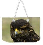 Hawk 1 Weekender Tote Bag