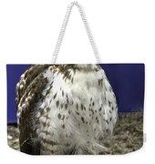 Hawk 3 Weekender Tote Bag