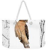 Hawk Framed In Branch Outline Weekender Tote Bag