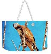 Hawk In A Glow Weekender Tote Bag