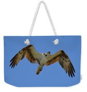 Hawk In Flight Weekender Tote Bag