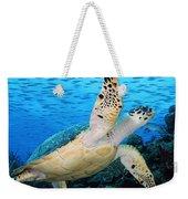Hawksbill On Eldorado Weekender Tote Bag